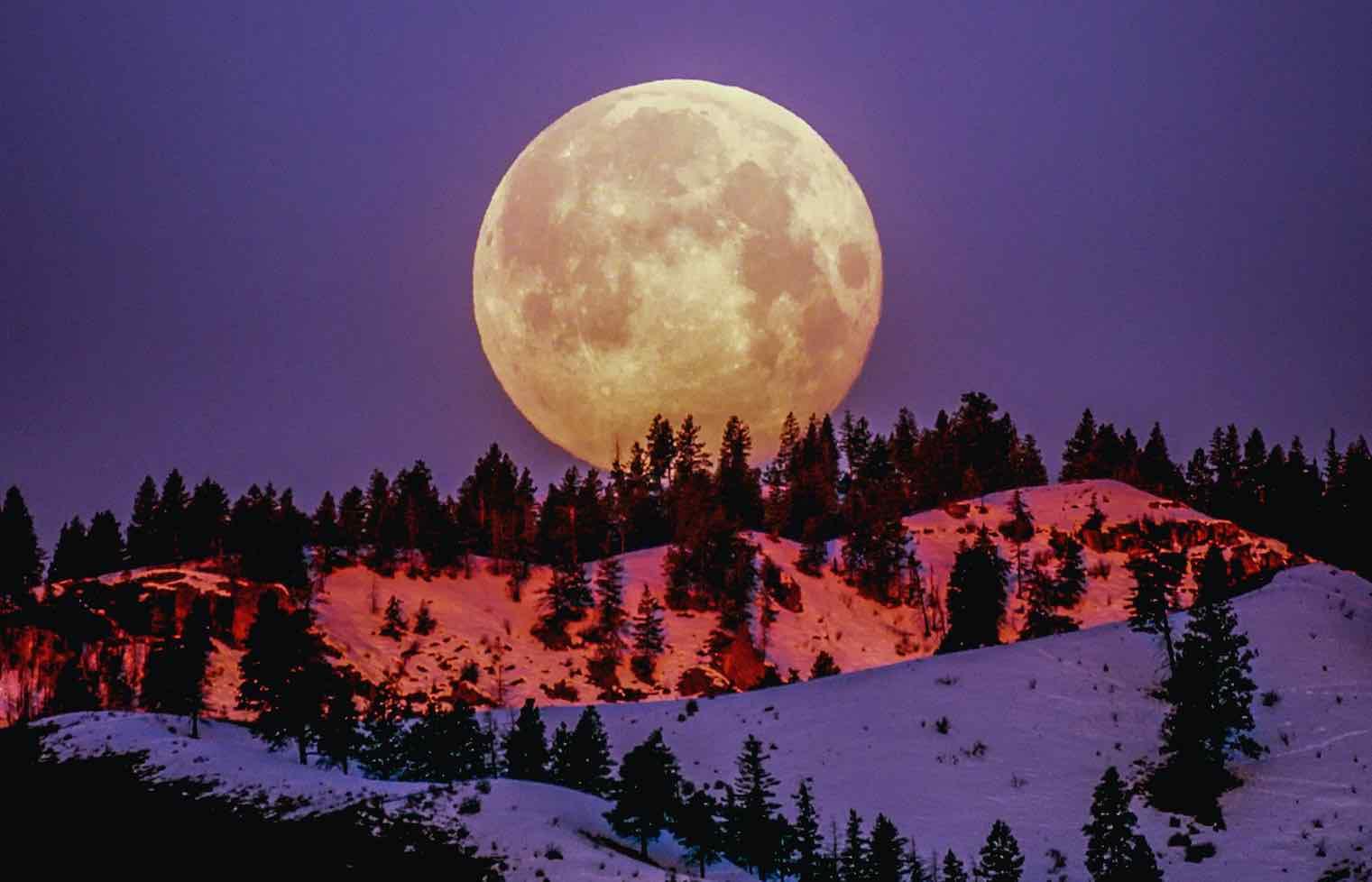 luna cazadora